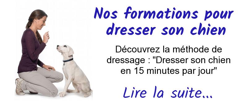 dresser son chien en 15 minutes par jour pdf