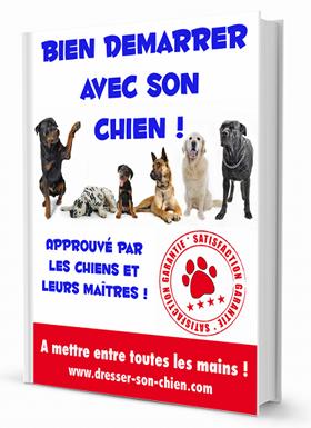 telechargez gratuitement le livre bien demarrer avec son chien