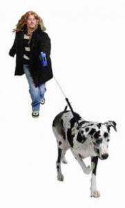 chien-marche-en-laisse