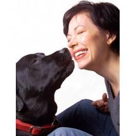 Le meilleur remède anti-âge : votre chien !