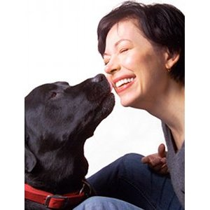 Pourquoi votre chien vous lèche ?