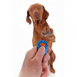 Comment dresser son chien au clicker ?