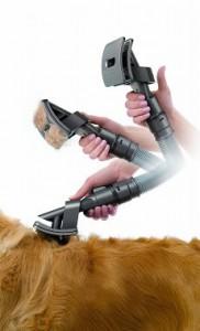 dyson-groom-aspirateur-poils-chien