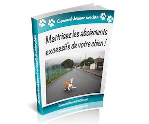 ebook-anti-aboiement