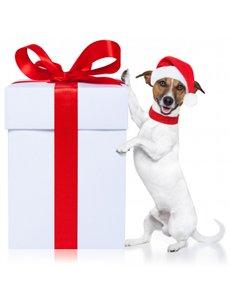encore plus de cadeau dressage chien