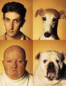 ressemblance-psychologique-chien-maitre