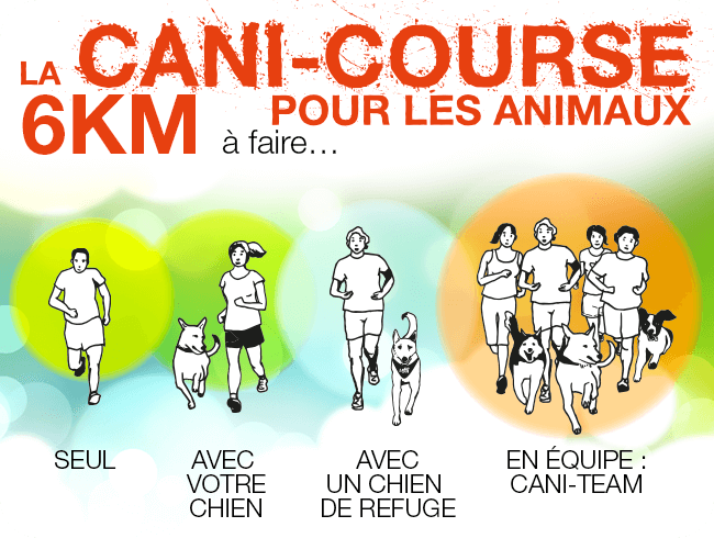 cani-course-info
