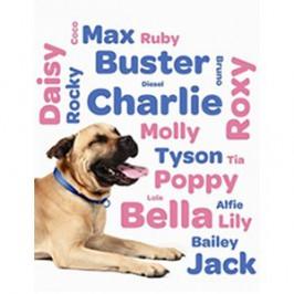 Nom de chien en L pour mâle et femelle