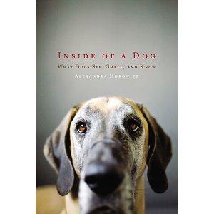 inside of a dog dans la peau chien