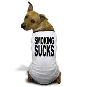 effet-cigarette-chien