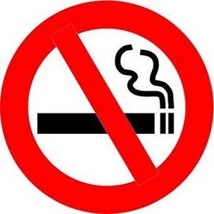 tabagisme-passif-chien