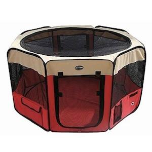 les 8 meilleurs outils pour rendre votre chiot propre. Black Bedroom Furniture Sets. Home Design Ideas