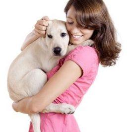 Dresser votre chien<br /> vous rend meilleur !